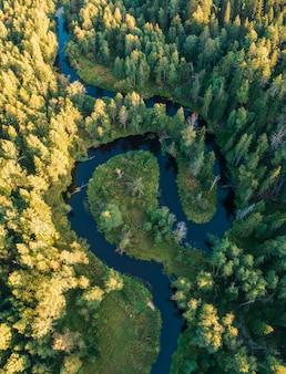 De rivier in het bos in de vorm van yin en yang lussen. lindulovskaya grove op de karelische landengte, bovenaanzicht van een drone