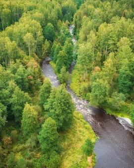 De rivier in het bos lindulovskaya grove op de karelische landengte, bovenaanzicht van een drone
