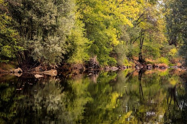 De rivier met een rustige stroming