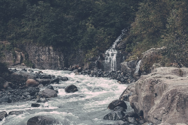 De rivierscène van de close-upmening in bos, nationaal park van dombay, kaukasus, rusland, europa. zomerlandschap, zonnig weer en zonnige dag
