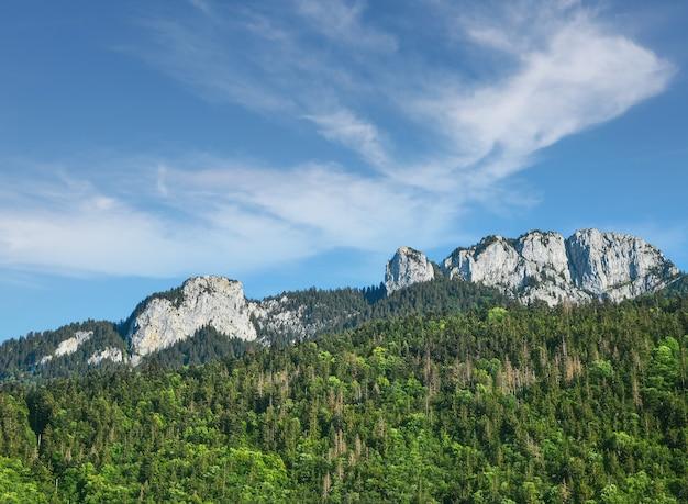 De rotsachtige bergketen van de mont blanc pieken over groene beboste bergen, zonnige dag, mooie lage hoekmening van franse kant