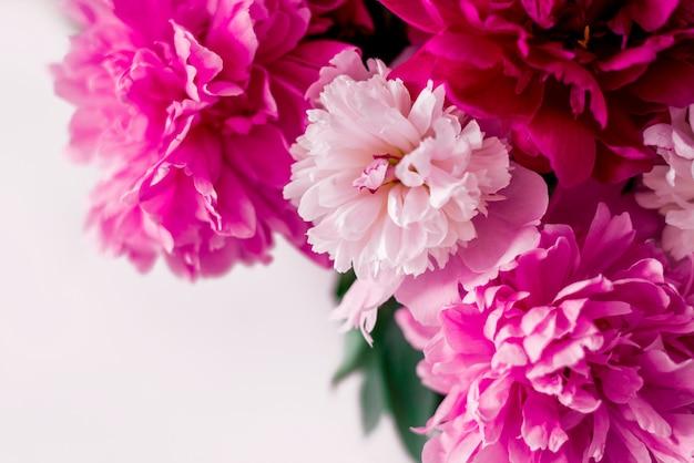 De roze en witte pioenen sluiten omhoog