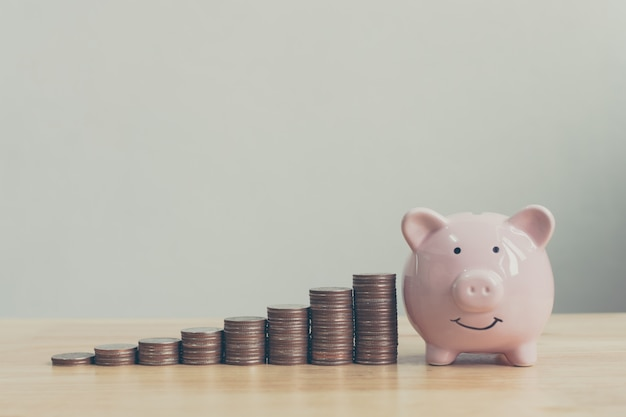 De roze kleur van het spaarvarken met geldstapel voert de groei op