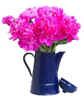 De roze pioen bloeit boeket in blauwe die pot op wit wordt geïsoleerd