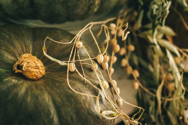 De rustieke regeling van het de herfstdecor met pompoenen sluit omhoog