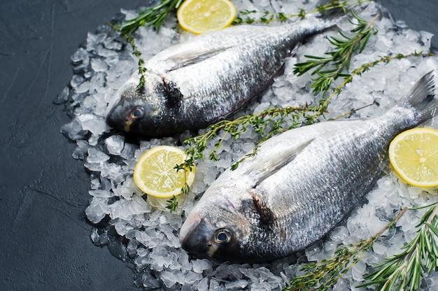 De ruwe dorado-vissen op ijs, ingrediënt, rozemarijn, citroen.