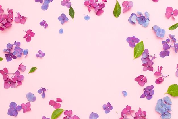 De samenstelling van bloemen. een frame van gedroogde roze bloemen op een witte achtergrond. platte zonnebank, bovenaanzicht, kopieerruimte
