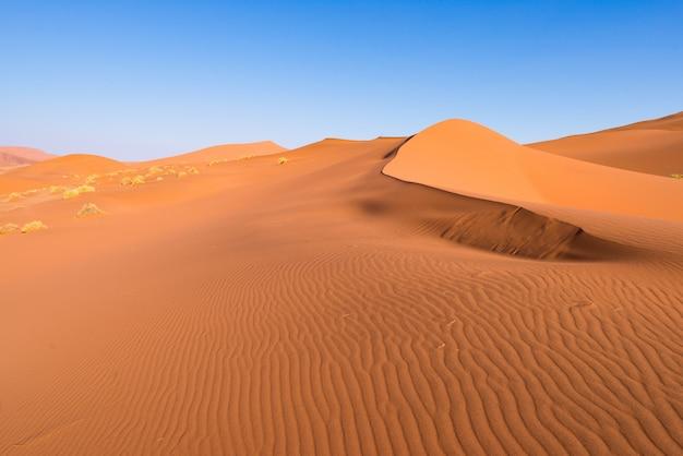 De schilderachtige sossusvlei en deadvlei, majestueuze zandduinen.
