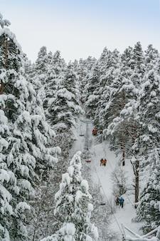 De skilift brengt skiërs en snowboarders door hoge pijnbomen na sneeuwval