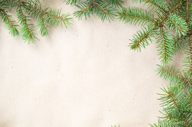 De spar vertakt zich grens op lichte rustieke achtergrond, goed voor kerstmis