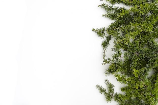 De spar vertakt zich kerstmisdecoratie op wit. rechts georiënteerd. ruimte kopiëren, plat leggen