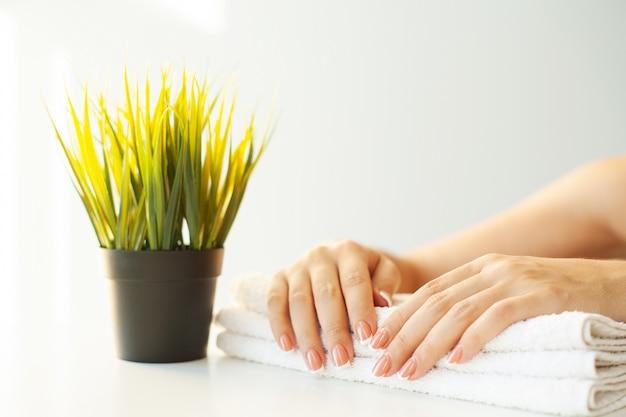 De spijkers van de mooie vrouw met franse manicure