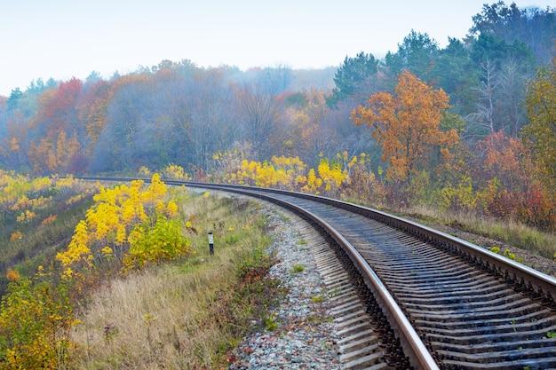 De spoorlijn die door het de herfstbos loopt