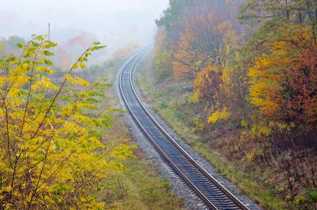 De spoorlijn die door het herfstbos loopt, bovenaanzicht