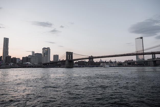 De stadsmening van new york van brooklyn brug