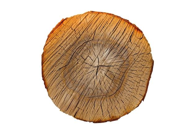 De stam van de berk is geïsoleerd op een witte achtergrond. ronde plak hout. hoge kwaliteit foto
