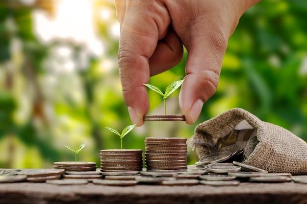 De stapel geldboom die in volgorde is geplant, omvat een hand met een munt die hand vasthoudt met een boom op de munt