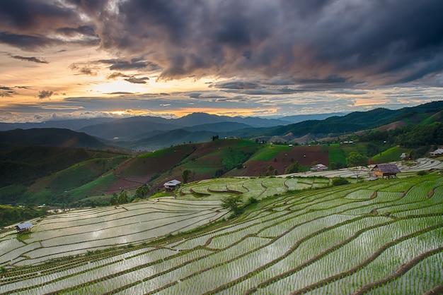 De stappen van de landbouw op de heuvel in het noorden van thailand Premium Foto
