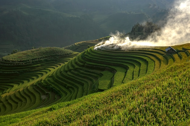 De stappen van het mooiste en meest emblematische van vietnam.