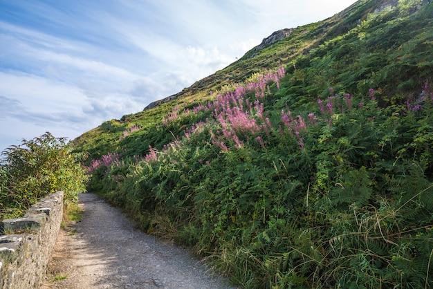 De steen schommelt berg wandelingsweg bij ierse zeekust. bray, greystone