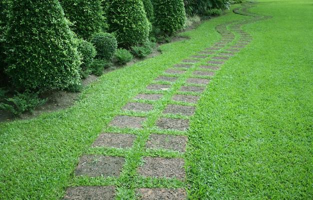 De stenen blok lopen pad in de tuin met groen gras