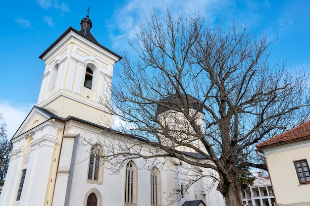 De stenen kerk aan de binnenplaats van het capriana-klooster. kale bomen en gebouwen, mooi weer in moldavië