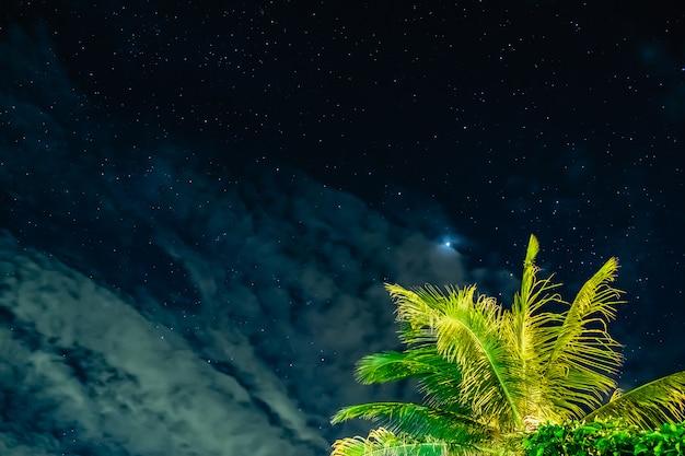De sterrenhemel met kokosnoot in de nacht