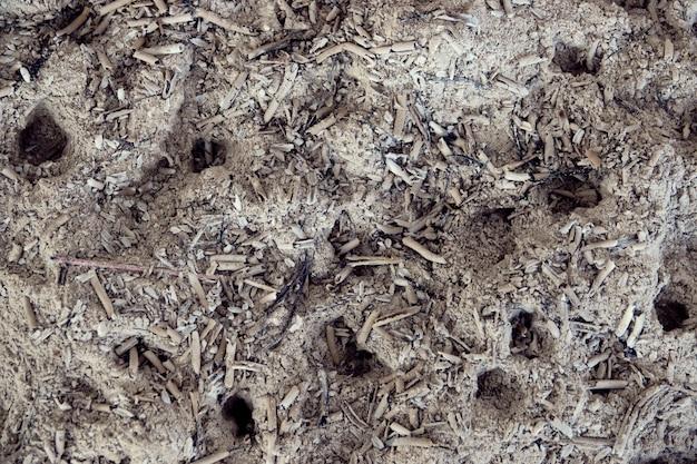 De stokken van de as in wierookbrander sluiten omhoog achtergrond