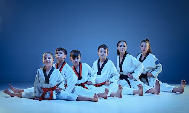 De studio-opname van een groep kinderen die karate-vechtsporten traint en zit en poseert op een blauwe achtergrond
