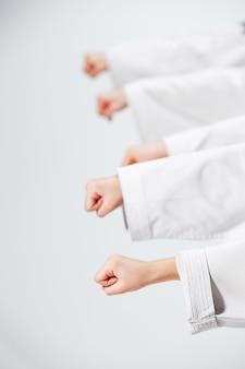 De studio-opname van een groep kinderen die karate-vechtsporten traint