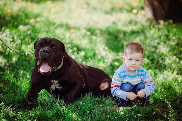 De sympathieke jongenszitting dichtbij hond in het park