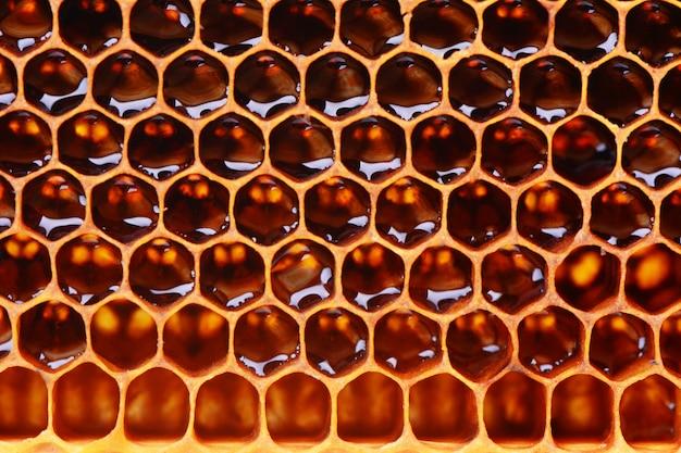 De textuurachtergrond van bijenhoningraten