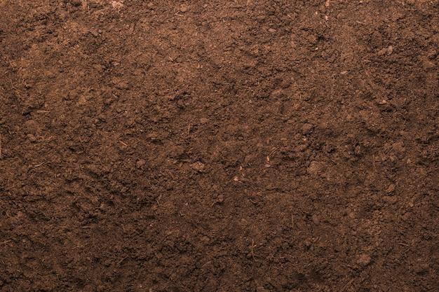 De textuurachtergrond van de grond voor het tuinieren concept