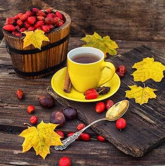 De thee van de herfstrozebottels