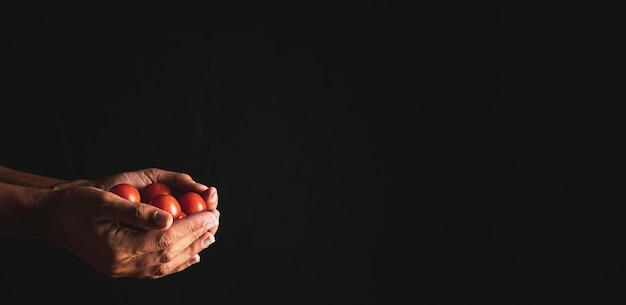 De tomaten van de de persoonsholding van de close-up met exemplaar-ruimte