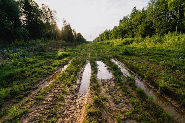 De transmissielijn van de hoogspanningsmacht in bos op de zomer