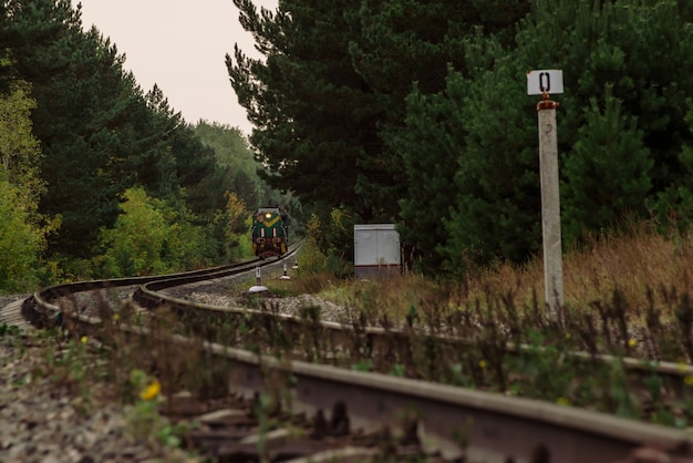 De trein rijdt over rails om in dicht struikgewas te keren. gedraaide spoorweg in donker bos. locomotief kronkelt. atmosferische duisternis spoorweglandschap.