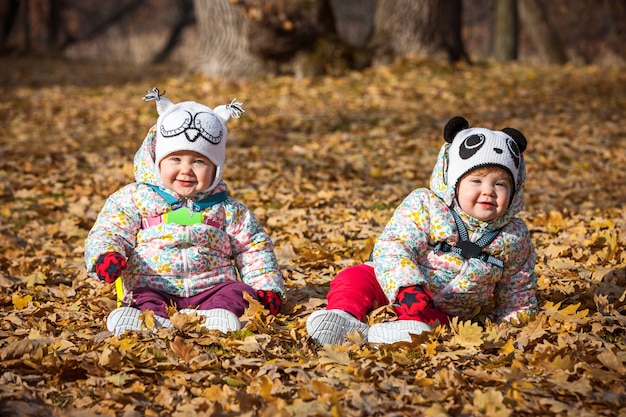 De twee kleine baby meisjes zitten in de herfst bladeren Gratis Foto