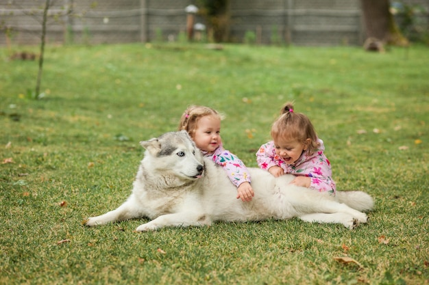 De twee kleine babymeisjes die met hond tegen groen gras spelen