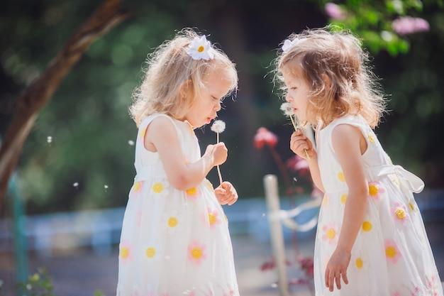 De tweelingmeisjes blazen paardebloemen