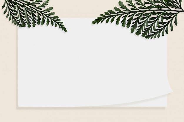 De varen van de witboek lege brochure isoleerde witte achtergrond.