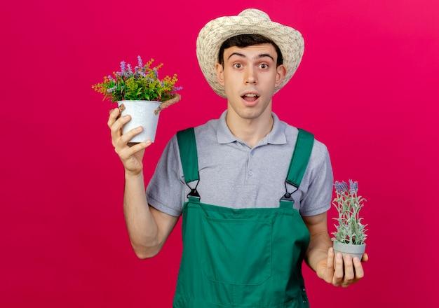 De verbaasde jonge mannelijke tuinman die tuinierende hoed draagt houdt bloemen in bloempotten