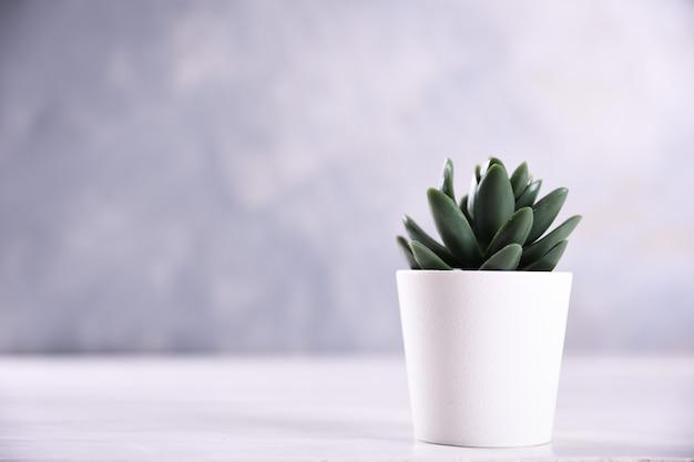 De verschillende vorm van het kunstbloemengras in een pot op houten dichte omhooggaand als achtergrond met exemplaarruimte en tekst