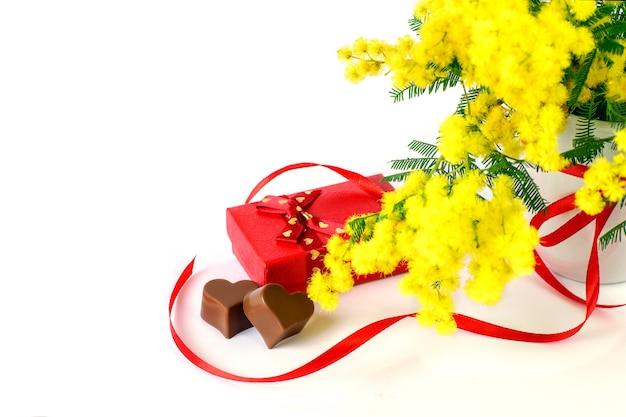 De verse bloem van de mimosalente op de witte achtergrond