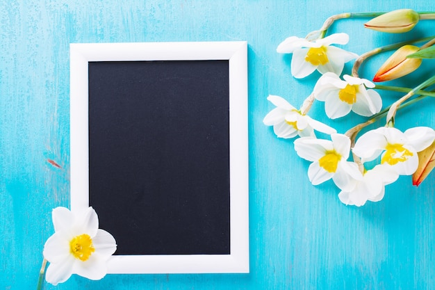 De verse de lente rode tulpen en narcissen bloeien op turkoois geschilderde houten plank.