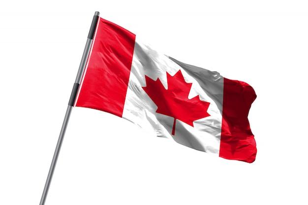 De vlag die van canada tegen wit achtergrondvoorraadbeeld golven