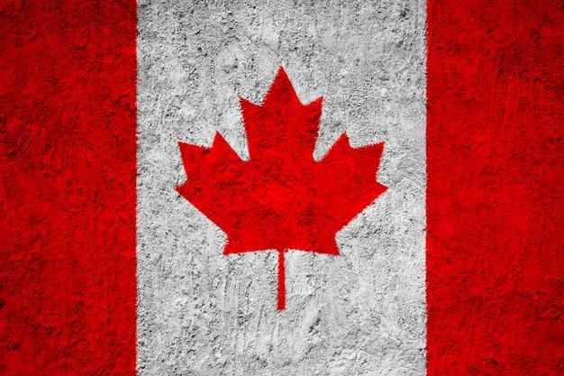 De vlag van canada op grungemuur die wordt geschilderd