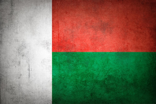 De vlag van madagaskar met grungetextuur.