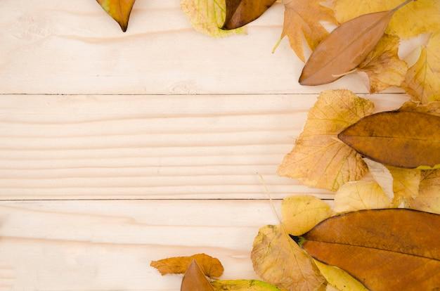 De vlakte van de herfstbladeren legt met exemplaarruimte