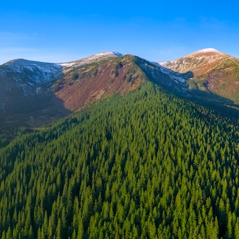 De voet van de berg met een met sneeuw bedekte top is bedekt met bos.